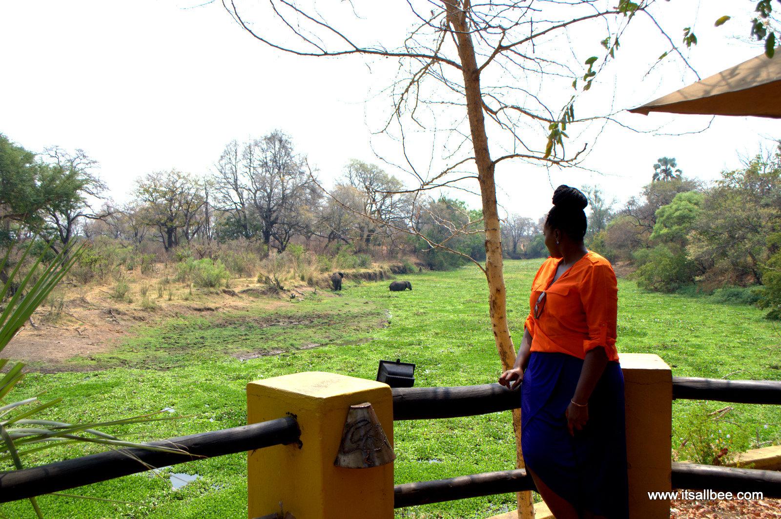 Maramba River Lodge (2)